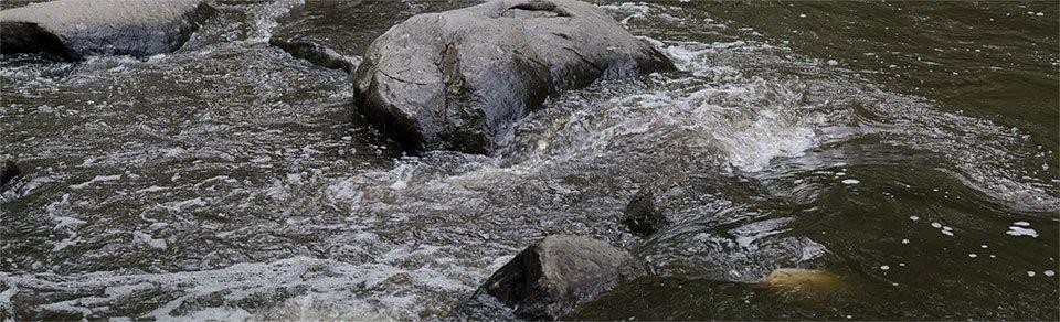 Rock Creek- 05132013-003