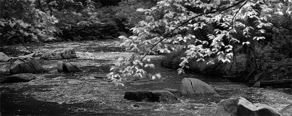 Rock Creek- 05132013-002
