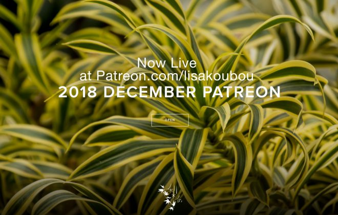 Spider Plant image for Patreon December Gallery